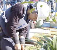 造園職種 銀賞/樋口 睦樹選手(24歳)
